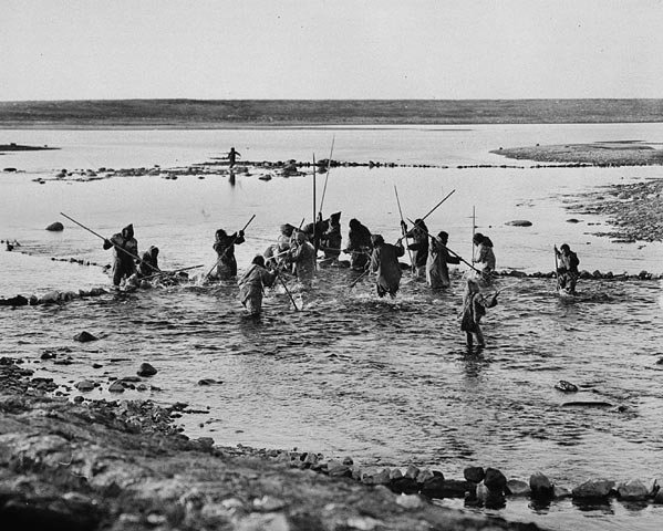 Photo Inuit men spearing fish at fish trap